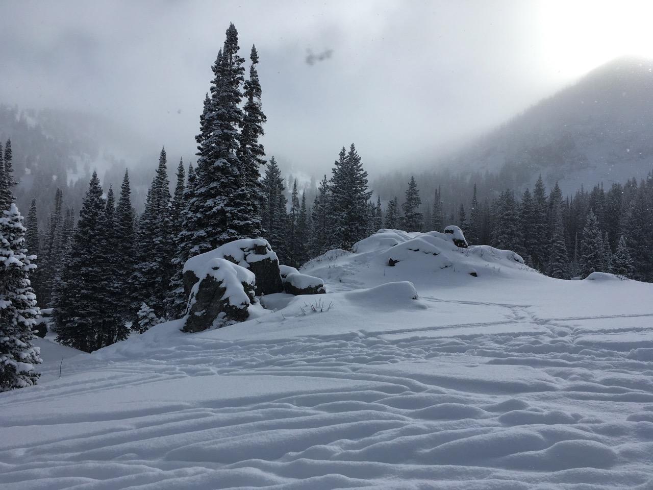 Alta Dec 2021 - 3.jpg