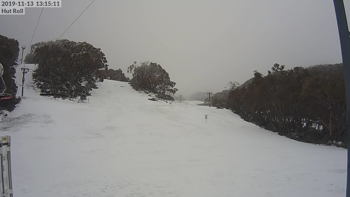 bawbaw-hut-roll web cam.13.11.19.jpg
