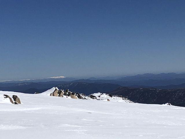 bogong_in_the_distance.jpeg