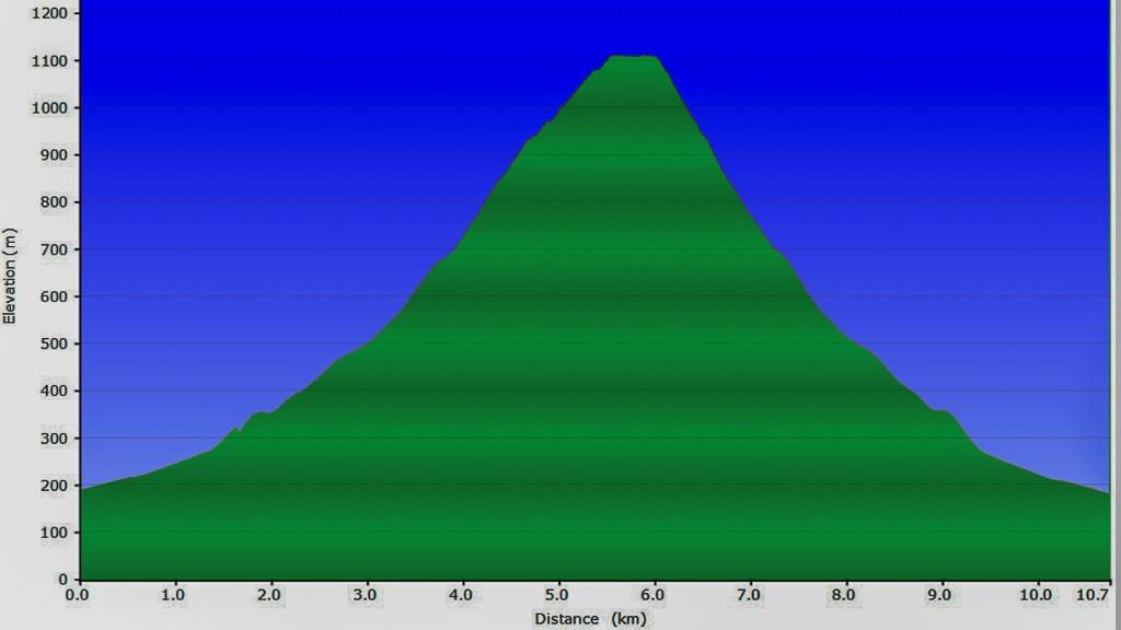 elevation-profile-mt-juliet-yarra-ranges-national-park.jpg