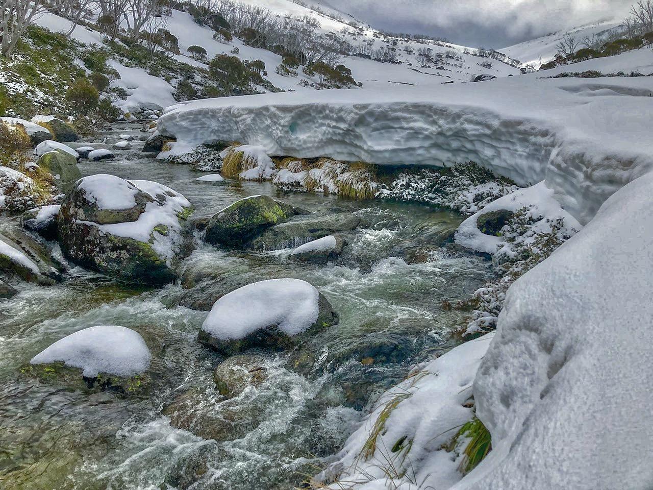 Guthega Creek # 3 (1).jpeg