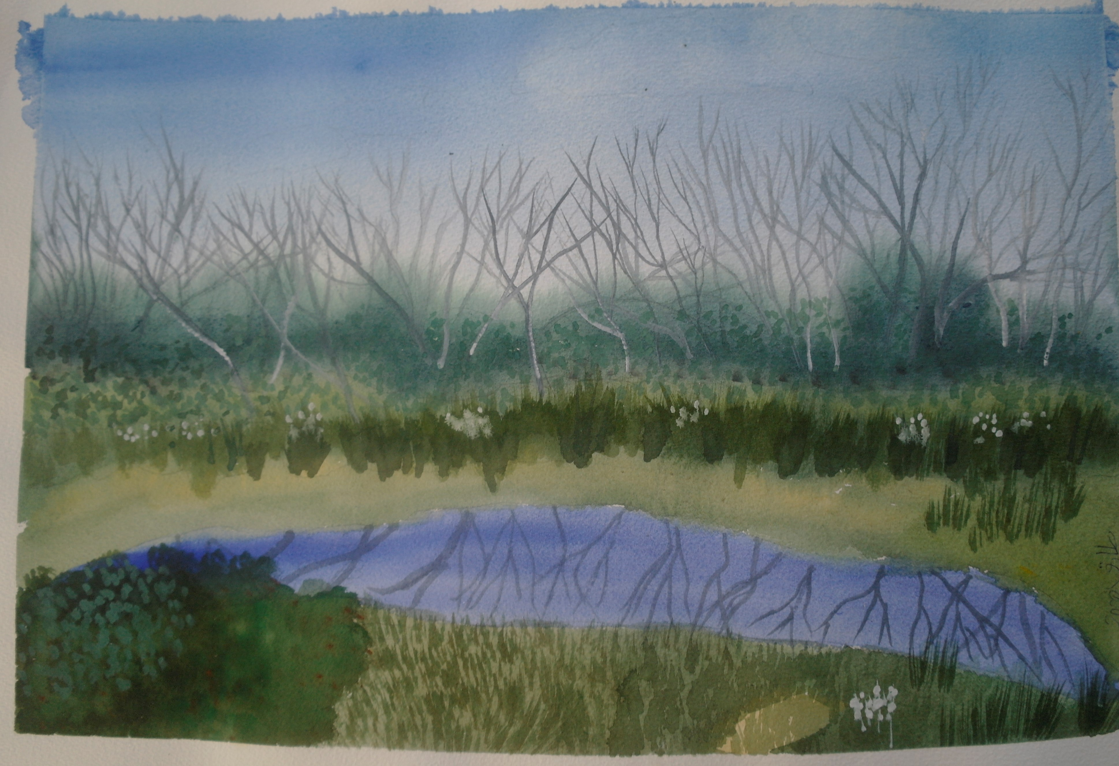 lake mtn.  in summer  cropped artwork pic.1.jpg