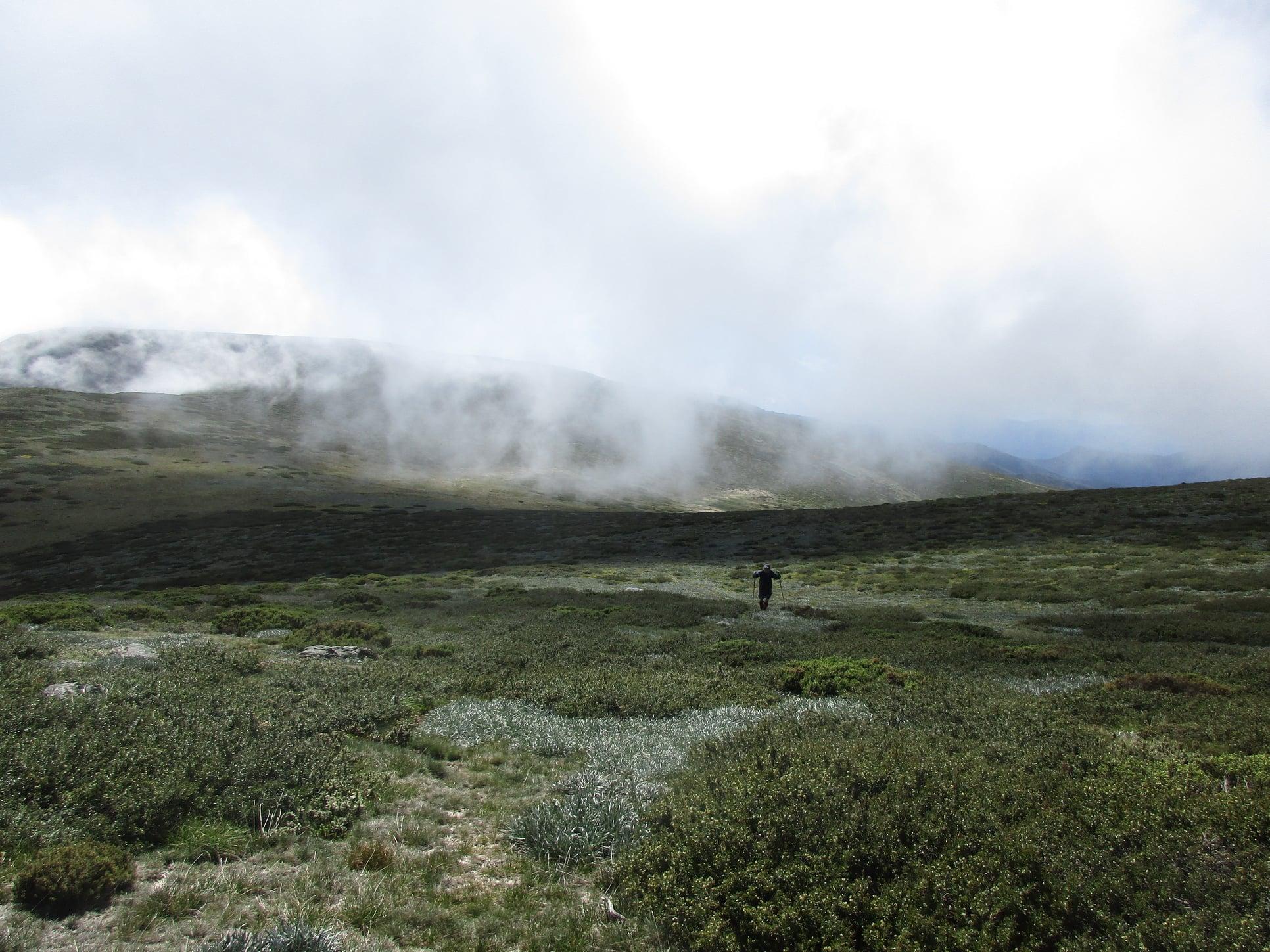 Mt. Bogong Summit  west. day  3.jpg