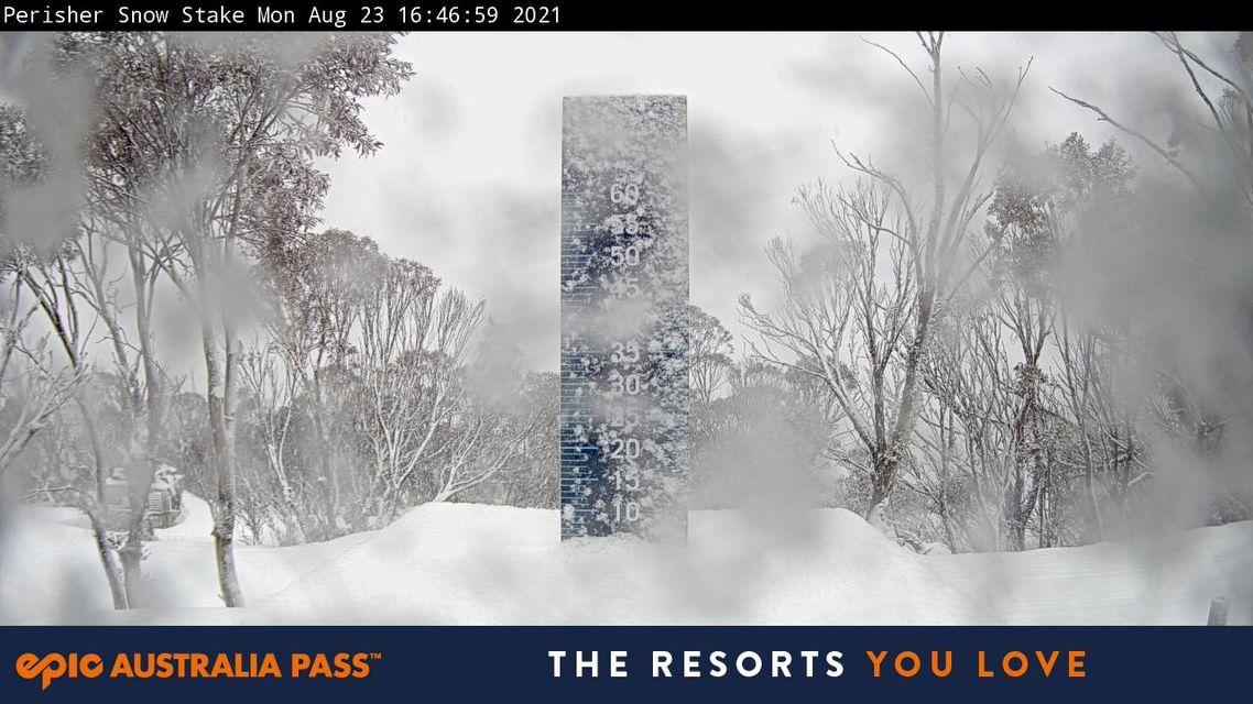 perisher-snowstake (1).jpg