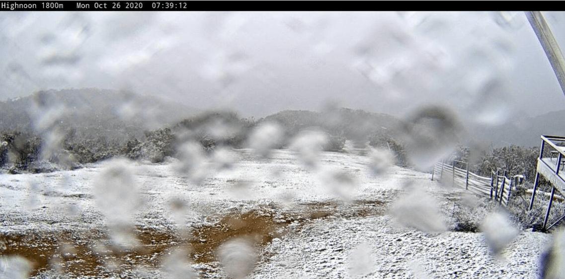 Screen Shot 2020-10-26 at 7.44.53 am.png
