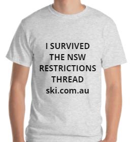 SIC Shirt.PNG