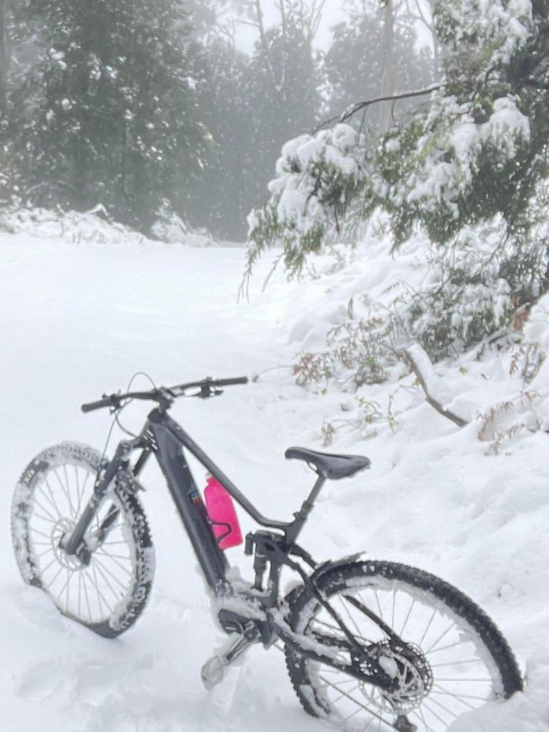 snowdb1.jpg