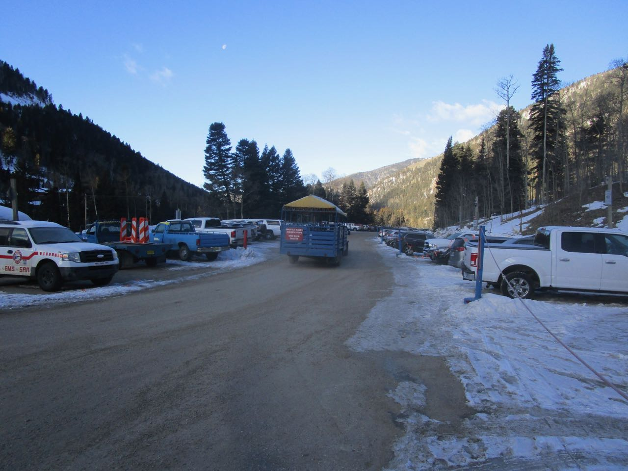 TR Bear parking 3.jpg